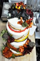 BearWeddingCake2web.jpg